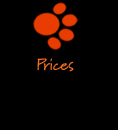 Graphic Design and Printing Prices